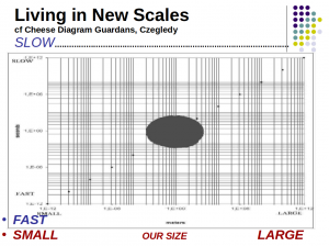 Living in New Scales, Roger Malina